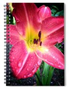 Mom's Secret Garden Spiral Notebook