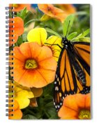 Monarch Among The Flowers Spiral Notebook