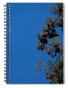 Monarch Butterflies Flying Spiral Notebook