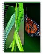 Monarch Butterfly 04 Spiral Notebook