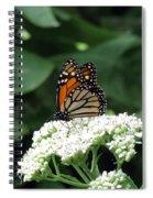Monarch Butterfly 45 Spiral Notebook