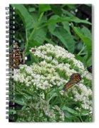 Monarch Butterfly 47 Spiral Notebook