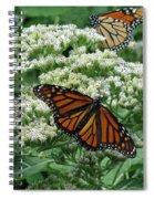 Monarch Butterfly 54 Spiral Notebook