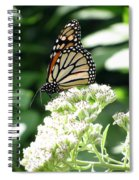 Monarch Butterfly 58 Spiral Notebook