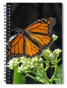 Monarch Butterfly 60 Spiral Notebook