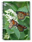 Monarch Butterfly 65 Spiral Notebook
