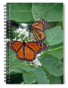 Monarch Butterfly 68 Spiral Notebook
