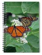 Monarch Butterfly 69 Spiral Notebook