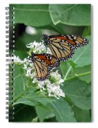 Monarch Butterfly 70 Spiral Notebook