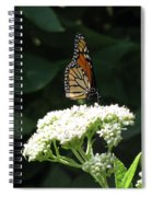 Monarch Butterfly 71 Spiral Notebook