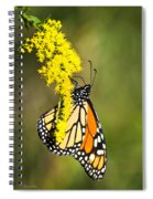 Monarch Butterfly On Goldenrod Spiral Notebook