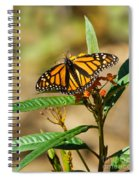 Monarch Butterfly On Plant With Eggs Spiral Notebook
