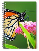 Monarch Butterfly Simple Pleasure Spiral Notebook