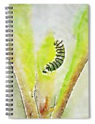 Monarch Caterpillar - Digital Watercolor Spiral Notebook