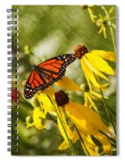 Monarch Days 1 Spiral Notebook