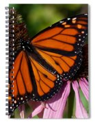 Monarch On Purple Coneflower Spiral Notebook