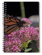 Monarch On Sedum Spiral Notebook