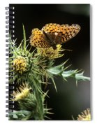 Monarch On Thistle Spiral Notebook