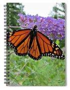Monarch Under Flowers Spiral Notebook