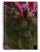 Monarda Spiral Notebook
