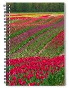 Monet Alive Spiral Notebook