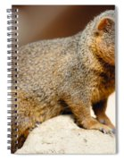 Mongoose Spiral Notebook