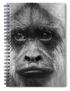 Monkey Eyes Spiral Notebook