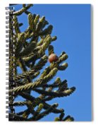 Monkey Puzzle Tree A Spiral Notebook