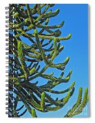 Monkey Puzzle Tree Spiral Notebook