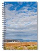 Mono Lake Tufa Formations Spiral Notebook