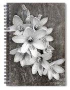 Monochrome Freesia Canvas Grunge Spiral Notebook