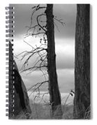Monochrome Trees Spiral Notebook