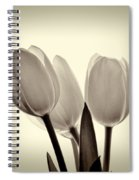 Monochrome Tulips With Vignette Spiral Notebook