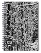 Monochrome Winter Wilderness Spiral Notebook