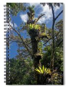Montagne D'ambre National Park Madagascar 4 Spiral Notebook