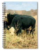 Moo Cow Munch Spiral Notebook