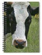 Moo Moo Eyes Spiral Notebook