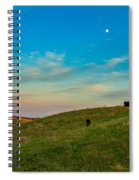 Moo Moon Spiral Notebook