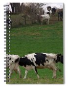 Moo Train Spiral Notebook