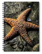 Moody Starfish II Spiral Notebook