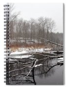 Winter's Moods Spiral Notebook