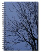 Moon And Bare Tree Spiral Notebook