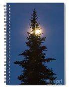 Moon Behind Spruce Spiral Notebook