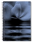 Moon Glow Double Vision Spiral Notebook