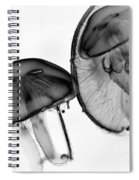 Moon Jellyfish - Black And White Spiral Notebook