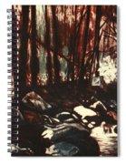 Moon Light Near The Cascades Spiral Notebook