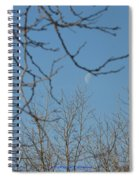 Moon On Treetop Spiral Notebook
