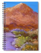 Moon Over Camelback Spiral Notebook