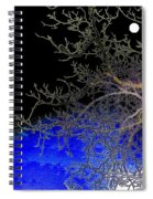 Moon Over Sapphire Pond Spiral Notebook