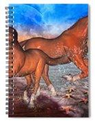 Moon Rise Splendor Spiral Notebook